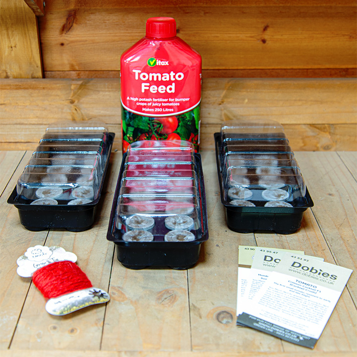 Dobies Tomato Growing Success Kit