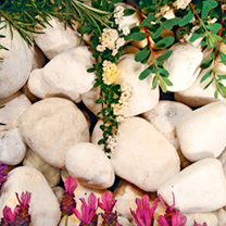 Coral White Pebbles - Bulk