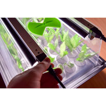 Large Heated Hydropod Cutting Propagator with Lights and Heater
