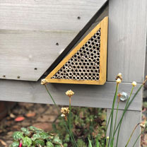 VegTrug Bee Bar