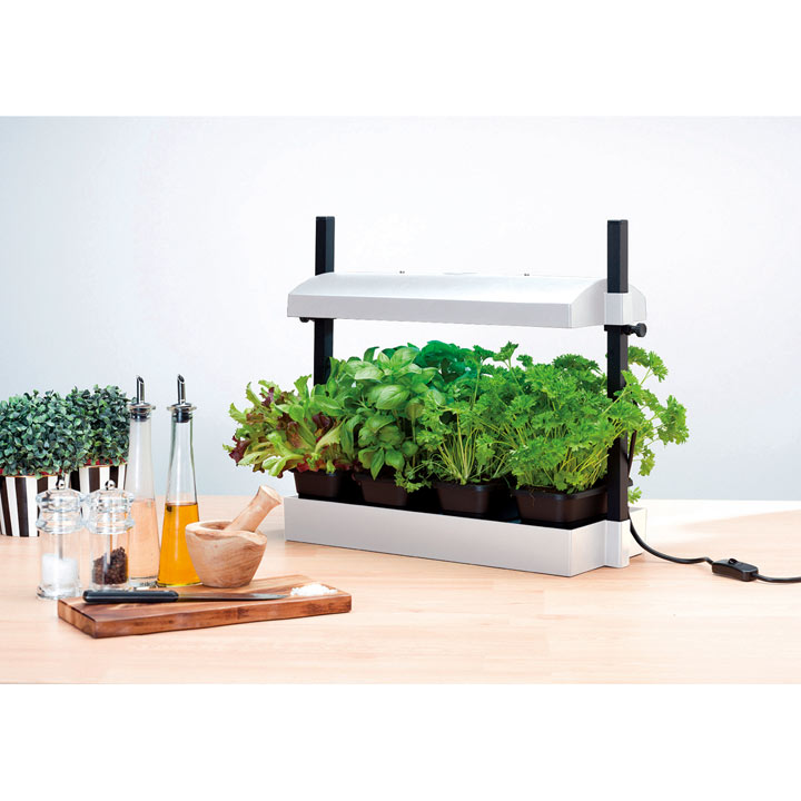 Grow Light Garden - Black