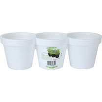 Herb Trio Planter - White
