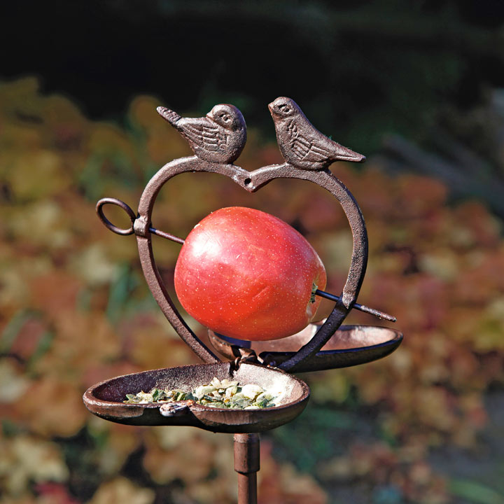 Bird Apple Feeder