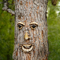 Garden Decorative Tree Face