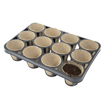 Skelly Tray with Biodegradable Pots (Pack of 3)