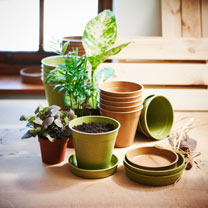 Bamboo and Rice Pots, Saucers and Seed Trays