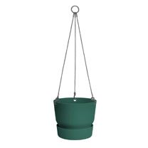 Greenville Hanging Basket - Leaf Green