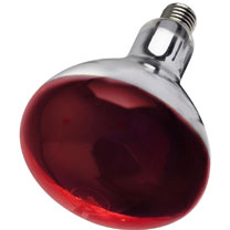 150 watt Infra-Red Bulb - Red