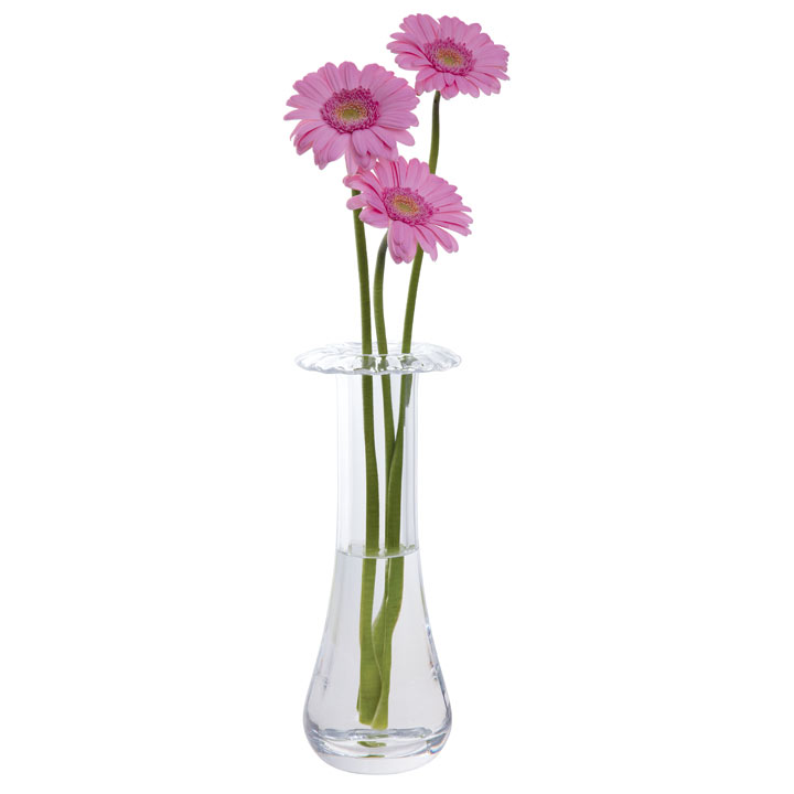 Gerbera Vase View All Gifts All Gift Ideas Gift Ideas Garden