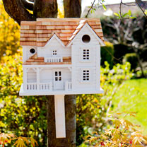 Birdhouse - Kingsgate Cottage