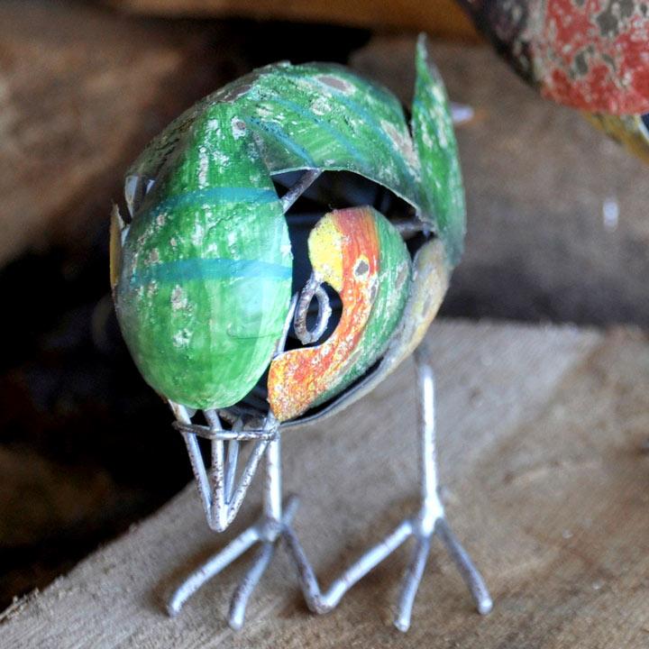 Greenfinch Bird