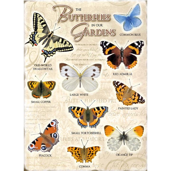 Metal Sign - Butterflies