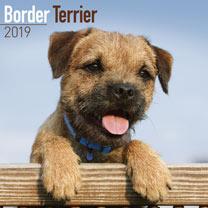 Dog Breed 2018 Calendar - Border Terrier