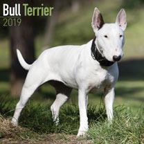 Image of Dog Breed 2018 Calendar - Bull Terrier