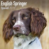 Image of Dog Breed 2018 Calendar - English Springer Spaniel