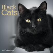 Wall Calendar - Black Cats