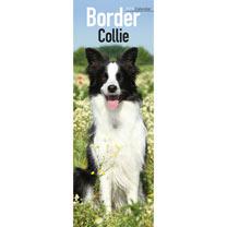 Slimline 2018 Calendar - Border Collie
