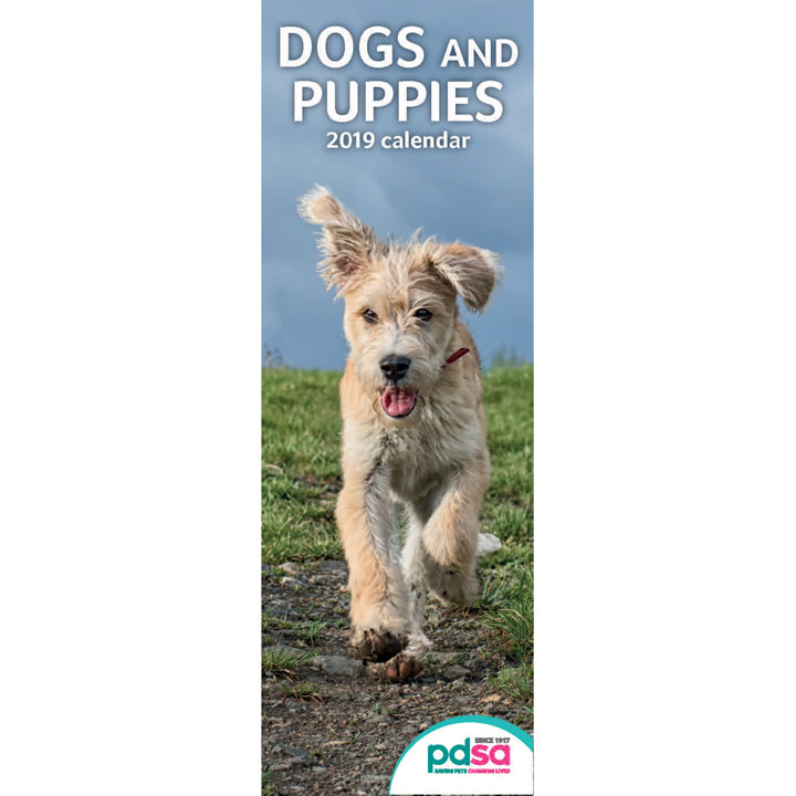 PDSA Slimline Dogs & Puppies Calendar 2019