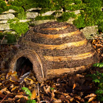 Hedgehog House - Igloo