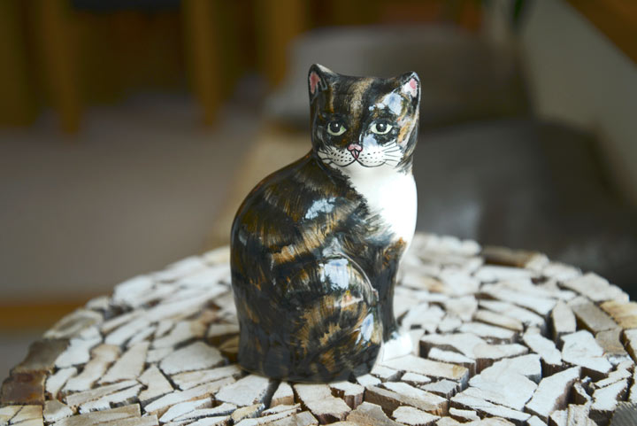 Shelf Cats