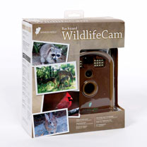 Wildlife Cam