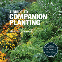 A Guide To Companion Planting
