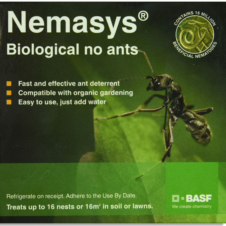 No Ants (Up to 16 Nests)