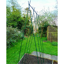 Runner Bean Support Frame Kit