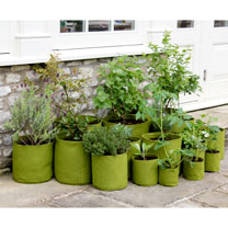 Vigoroot Potato/Tomato Planters - 40 Litre