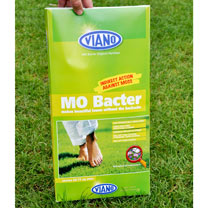 MO Bacter