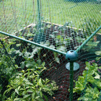 Butterfly Protection Cage - 125 x 125 x 125cm
