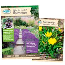 Dobies Summer Catalogue