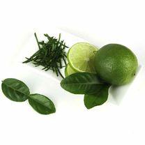 Citrus Plant - Lime