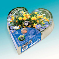 100% biodegradable and ready for planting, our Plant-O-Mat Heart is the simplest way to plant perfect bulb displays in containers or borders. The egg-