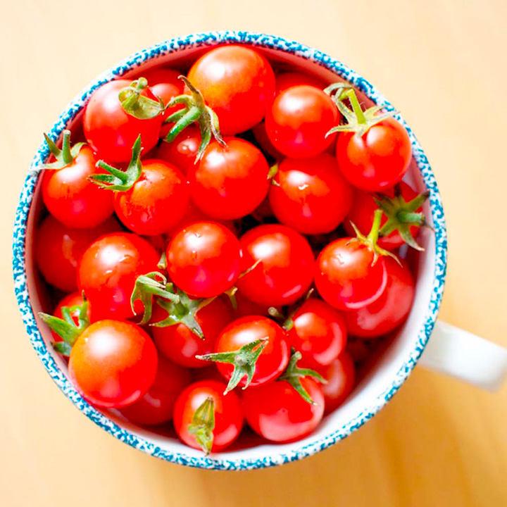 Tomato Plant - Sweet Aperitif