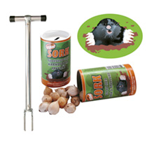 Image of Anti-Mole bulbs & Planting Tool