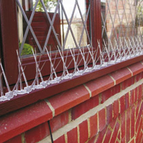Deter birds from perching & roosting on windowsills, ledges, pipes, gutters and aerials, with these easy-to-install spikes. Made from super strong UV