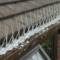 Image of BirdBan Gutter Attaching Clips
