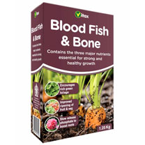 Blood Fish & Bone