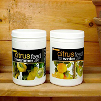 Summer and Winter Citrus Feed