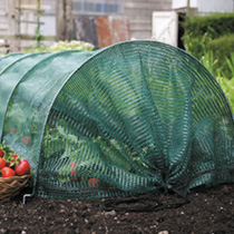 Easy Netting Tunnel (3 Metre Standard)
