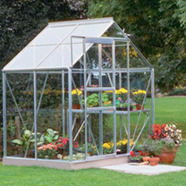 Aluminium Popular 6' x 4' Greenhouse with Hort. Glass + Greenhouse Base + 2 Tier Staging with top extension shelving + Auto Vent