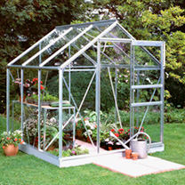Aluminium Popular 6' x 6' Greenhouse with Hort. Glass + Greenhouse Base + 2 Tier Staging with top extension shelving + Auto Vent