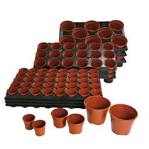Growing on Pots and Trays, 3 Trays & 54 8cm Pots