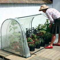 Year-Round Grower System