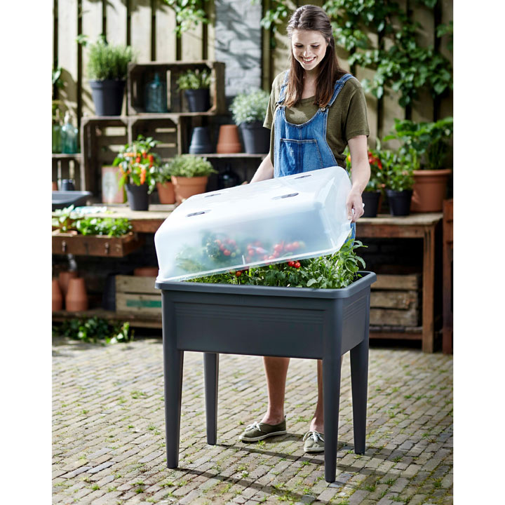 Grow Table Super XXL & House + FREE Seeds