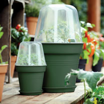 Leaf Green Grow Pot 17cm + Bell Cover + Saucer