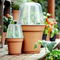 Grow Pot + Bell Cover + Saucer
