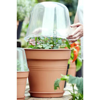 Grow Pot - 30cm