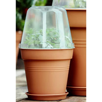 Image of Grow Pot 17cm + Bell Cover + Saucer